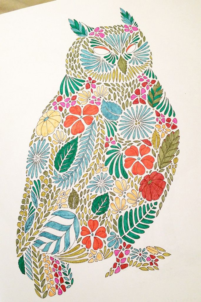 From Johanna Basfords Secret Garden Gorgeous Owl