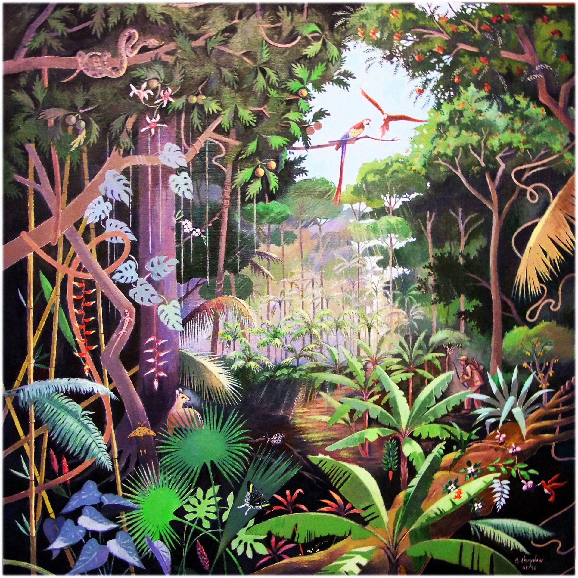 Clairiere Tropicale Dessin Foret Peinture De Foret Image Foret