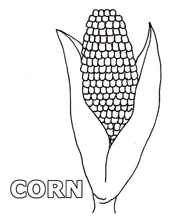 One Beuatiful Corn Coloring Page