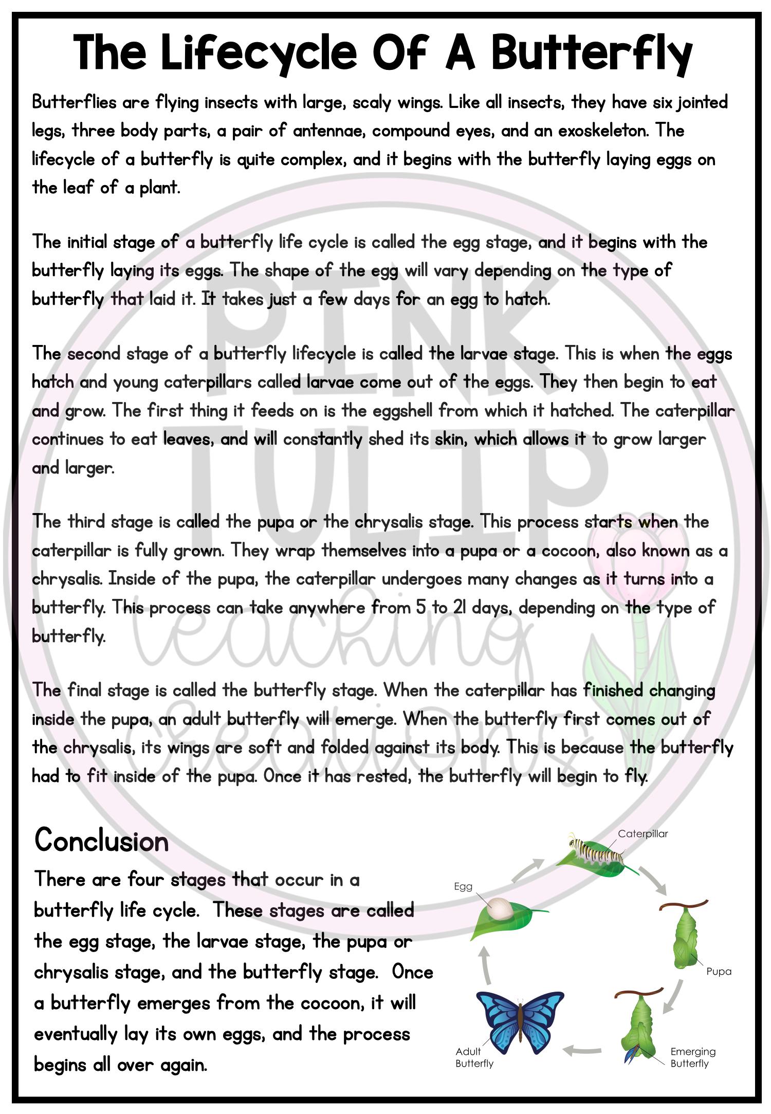 Explanation Writing