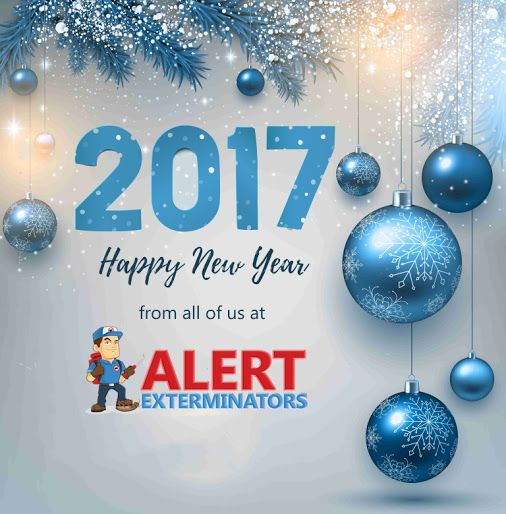 Happy New Year Http Alertexterminator Com Pest Control Happy New Year 2 Happy New Year Happy Christmas Bulbs
