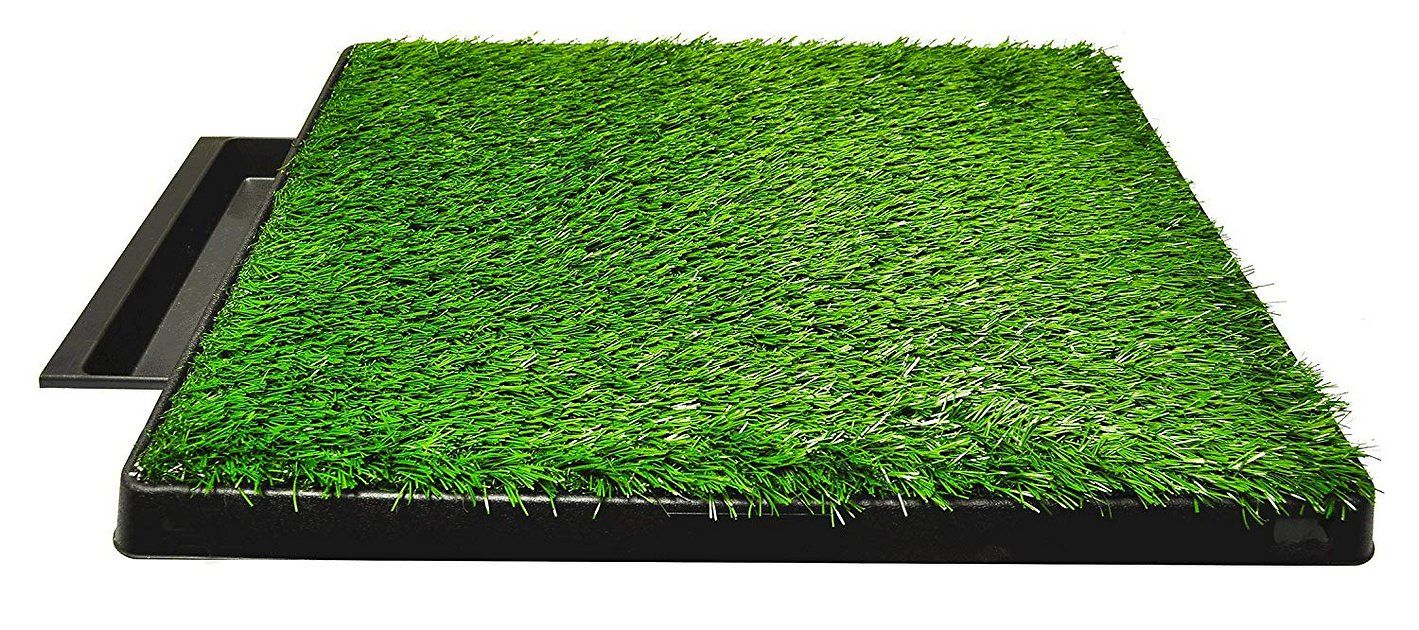 Buy Downtown Pet Supply Pee Turf Portable Dog Potty with