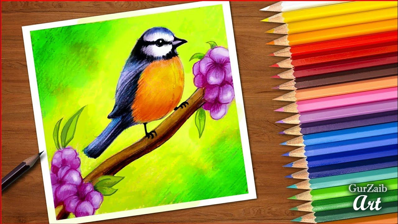 How To Draw Spring Bird Colored Pencils Tutorial Bird Sitting On Oil Pastel Paintings Colorful Drawings Art Drawings Simple