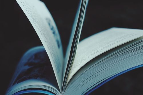 bibliophile, book, and books image