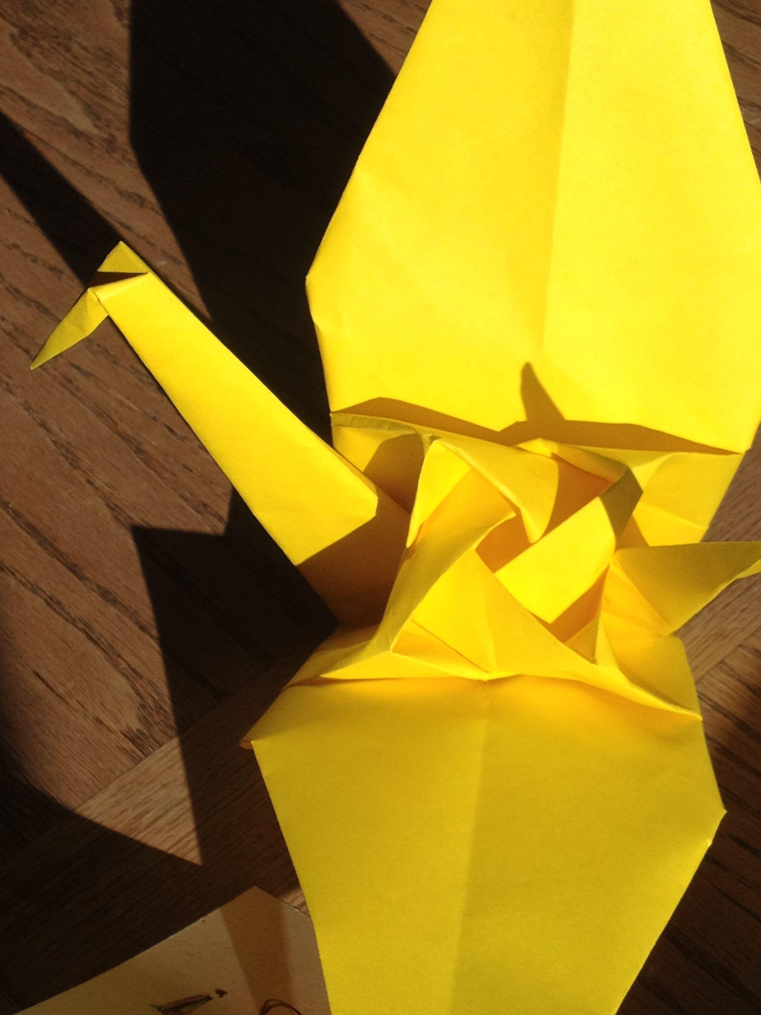 Origami rose crane at sunrise in tucson origami rose