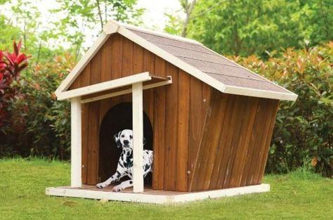 Beacon Dog House