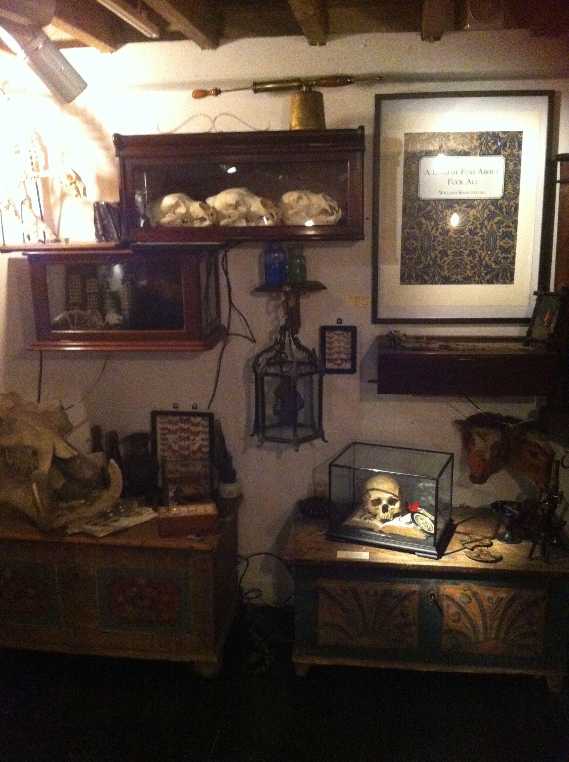 Museum of Wonder basement of PA 15 Bateman Street, Soho