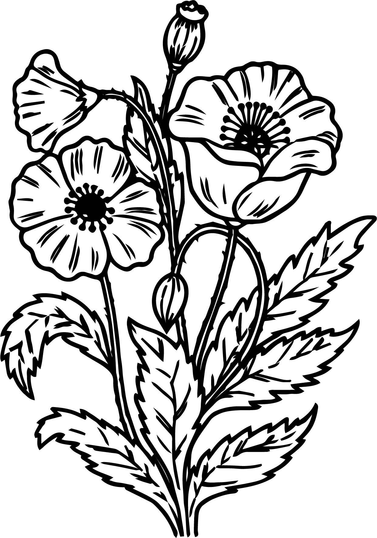 Nice Noel Flower Coloring Page