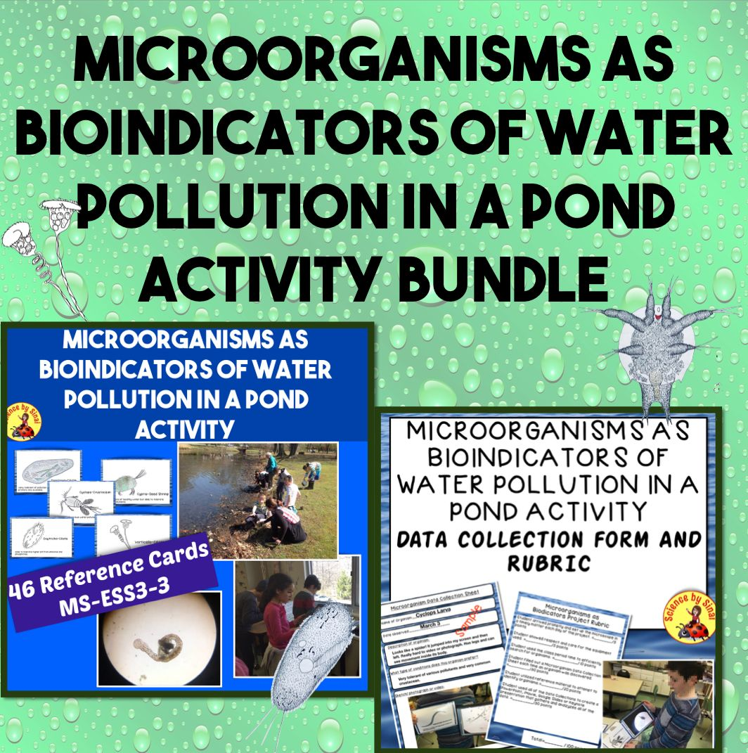 Microorganisms As Bioindicators Of Water Pollution In A
