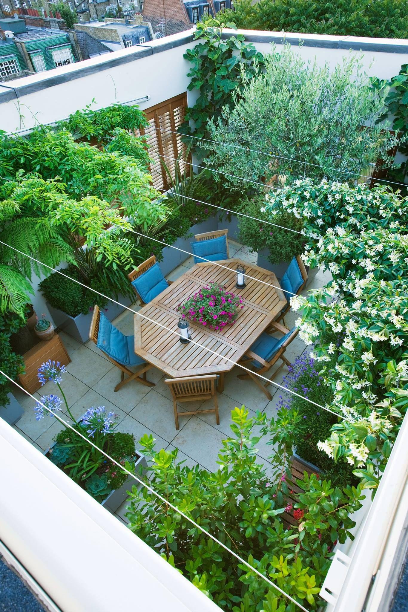 Le toit terrasse vu de haut Un toit terrasse verdoyant en plein