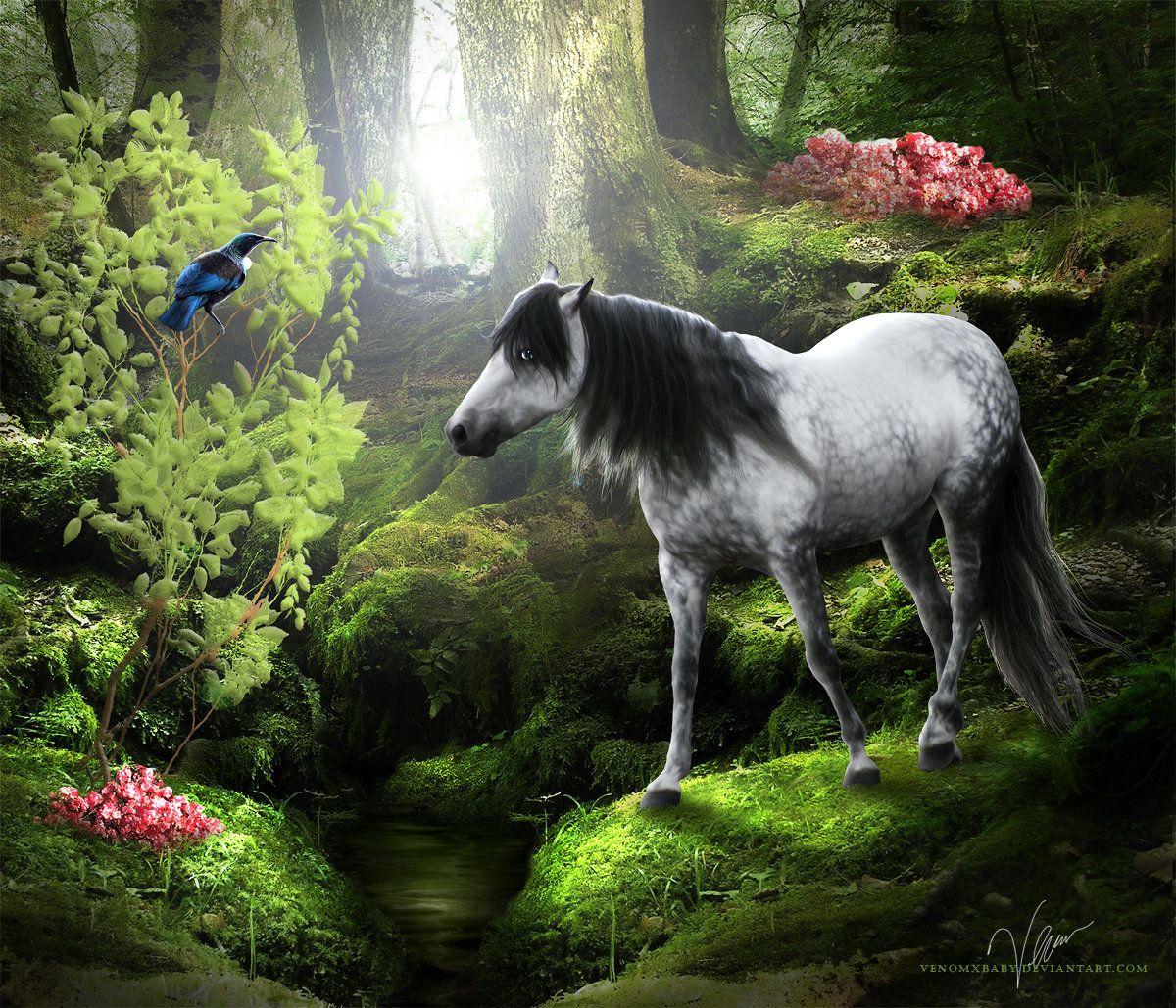 walk through the woods by venomxbaby on DeviantArt