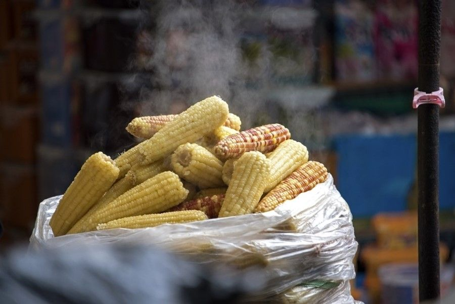 Steamed corn selling in the traditional market, Cheongju, South Korea