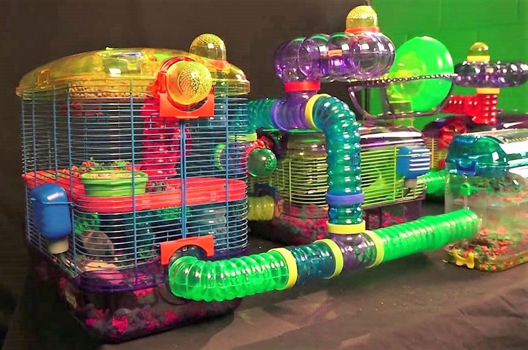 Cool Hamster Cages And Tubes Sale Cool Hamster Cages Hamster Cages Hamster Cage