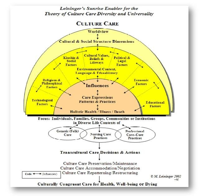 analysis of madeleine leininger s theory Madeleine leininger's theory of culture  providers who became interested to learn about culturally based care and  and and  transcultural nursing theory and.