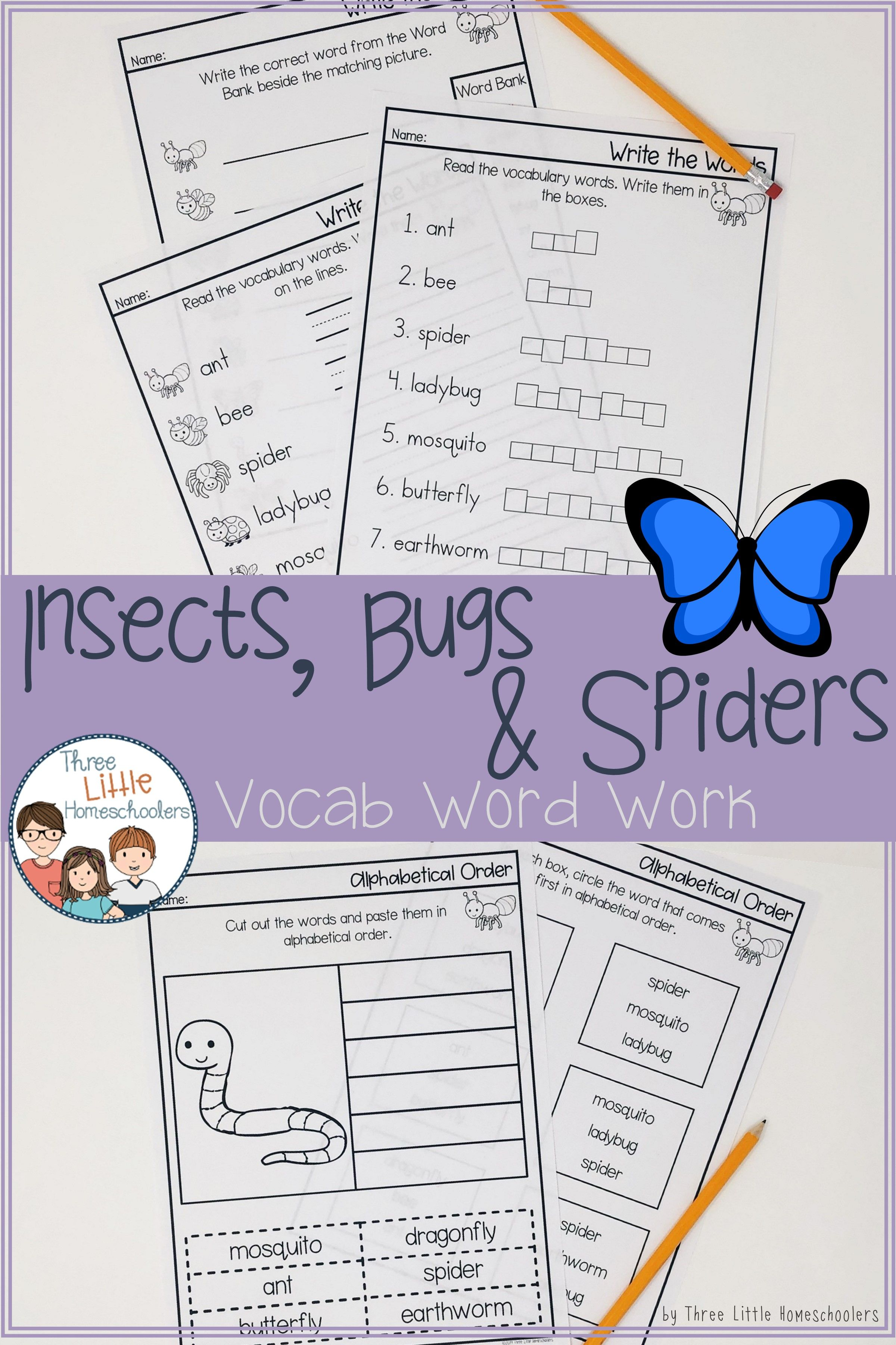 Insects Bugs Amp Spiders Vocabulary Spelling Word Work