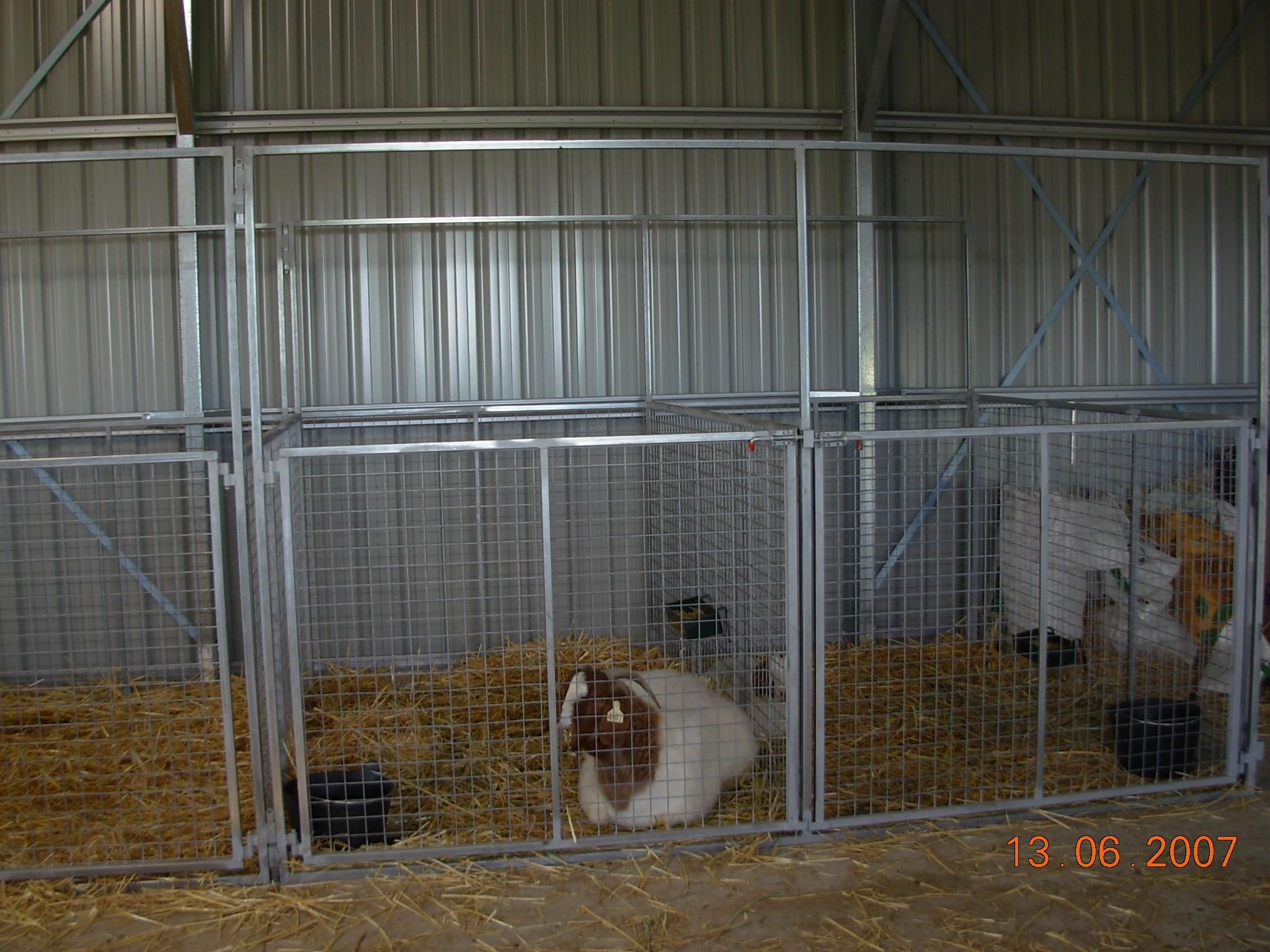 Really great goat barn! | goat | Goat barn, Boer goats ...