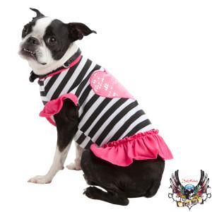 Your Dog Will Heart This Bret Michaels Pets Rock Dress Petsmart 11 19