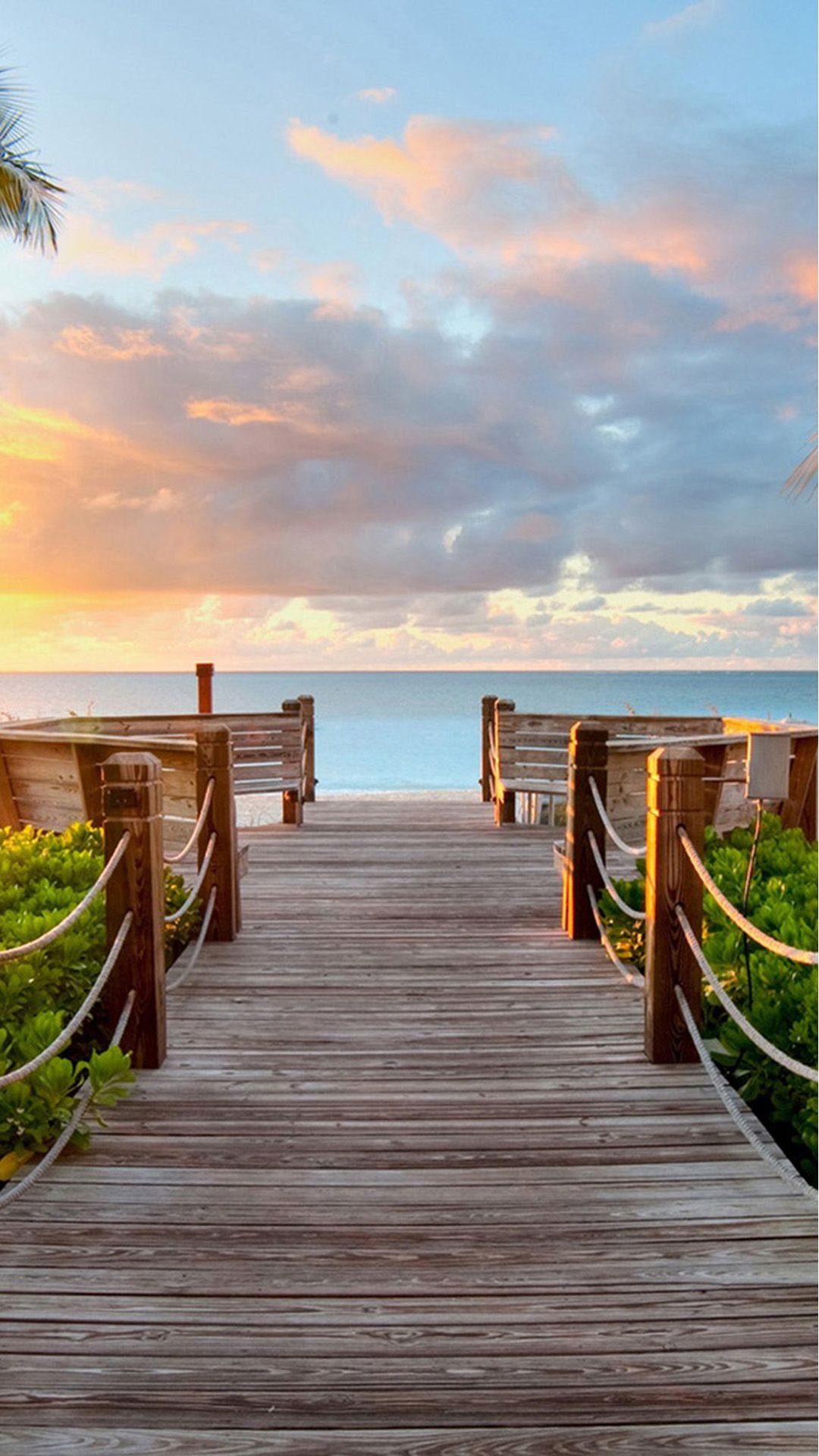 nature sunny bright skyscape wooden bridge #iphone #7 #wallpaper