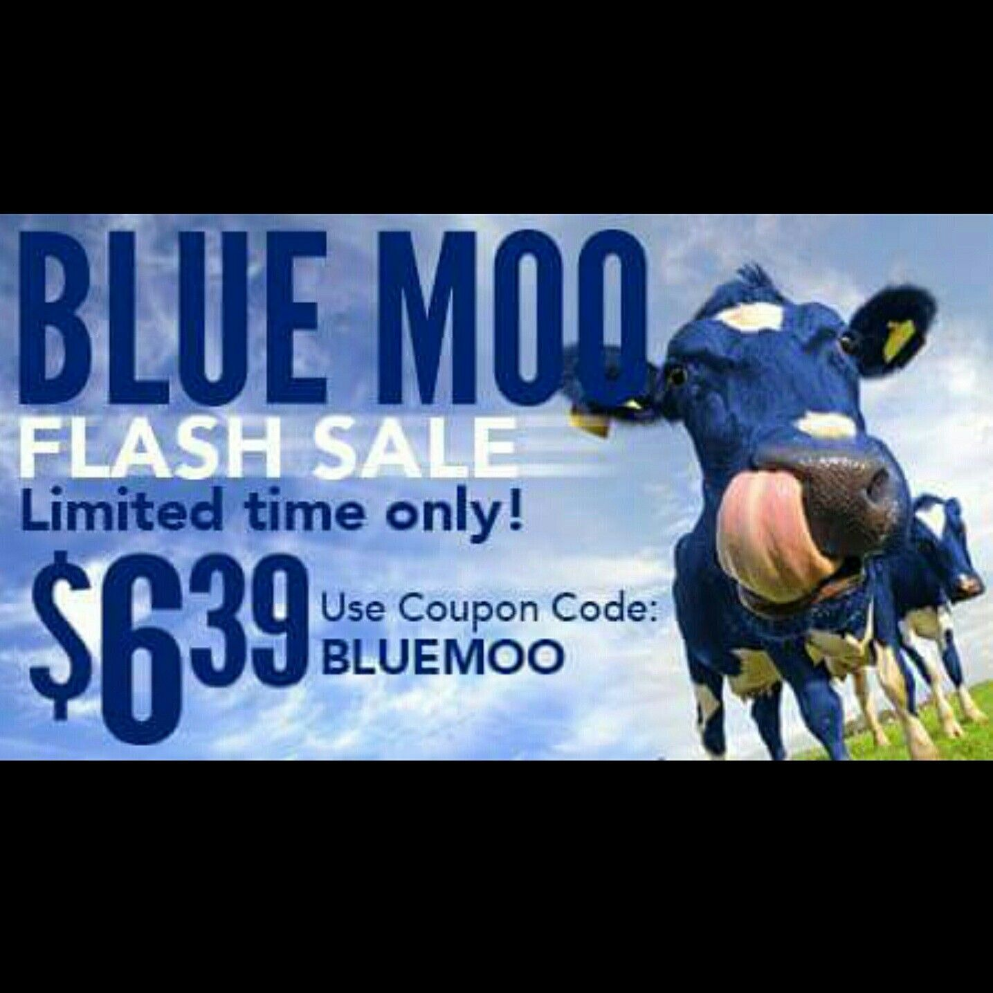 """National Don't Cry Over Spilled Milk Day! Blue Moo is a robust blend of blueberries & cream! $6.39 today only! Use promo code: """"BLUEMOO"""""""