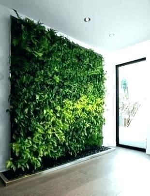 Diy Living Wall Indoor Decoration Indoor Living Wall Kits 640 x 480