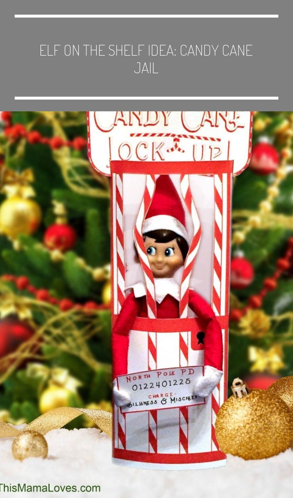 Terrific Cost Free Elf On The Shelf Idea Candy C Concepts In 2020 Elf On The Shelf Elf Christmas Activities