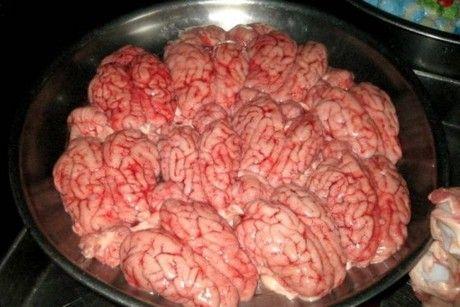 sudan culture - cow brains