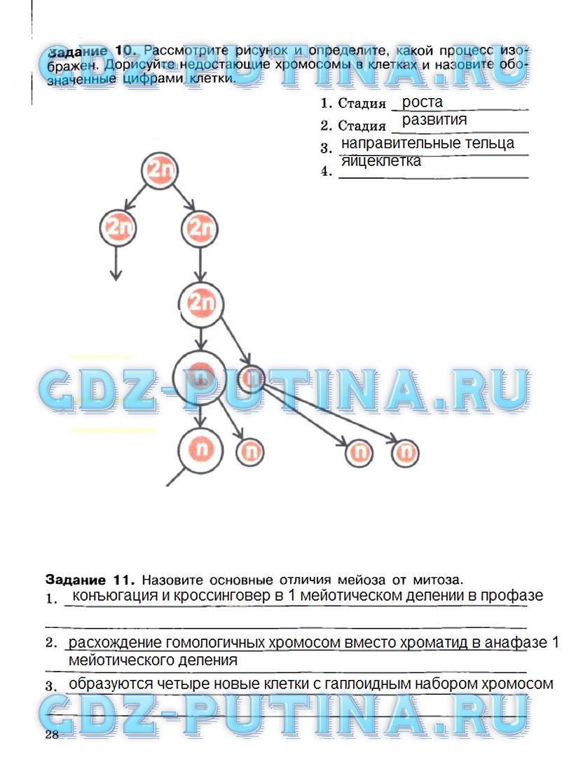 блок самоконтроля и взаимного контроля по географии 11 класс ответы