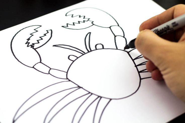 how to draw a crab art for kids hub - Kids Drawing Sites