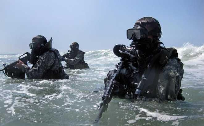 Seals best job in the world