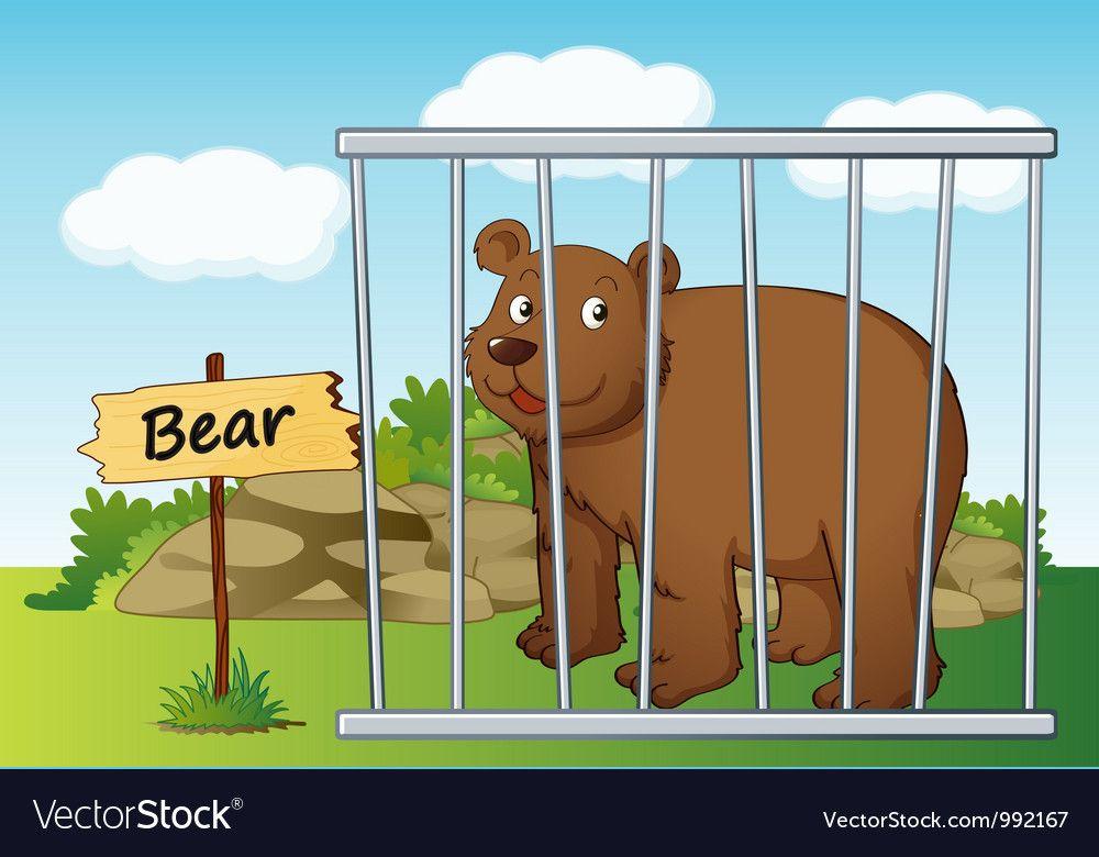 Cartoon Zoo Bear Vector Image On Vectorstock Cartoon Zoo Bear Vector Illustration