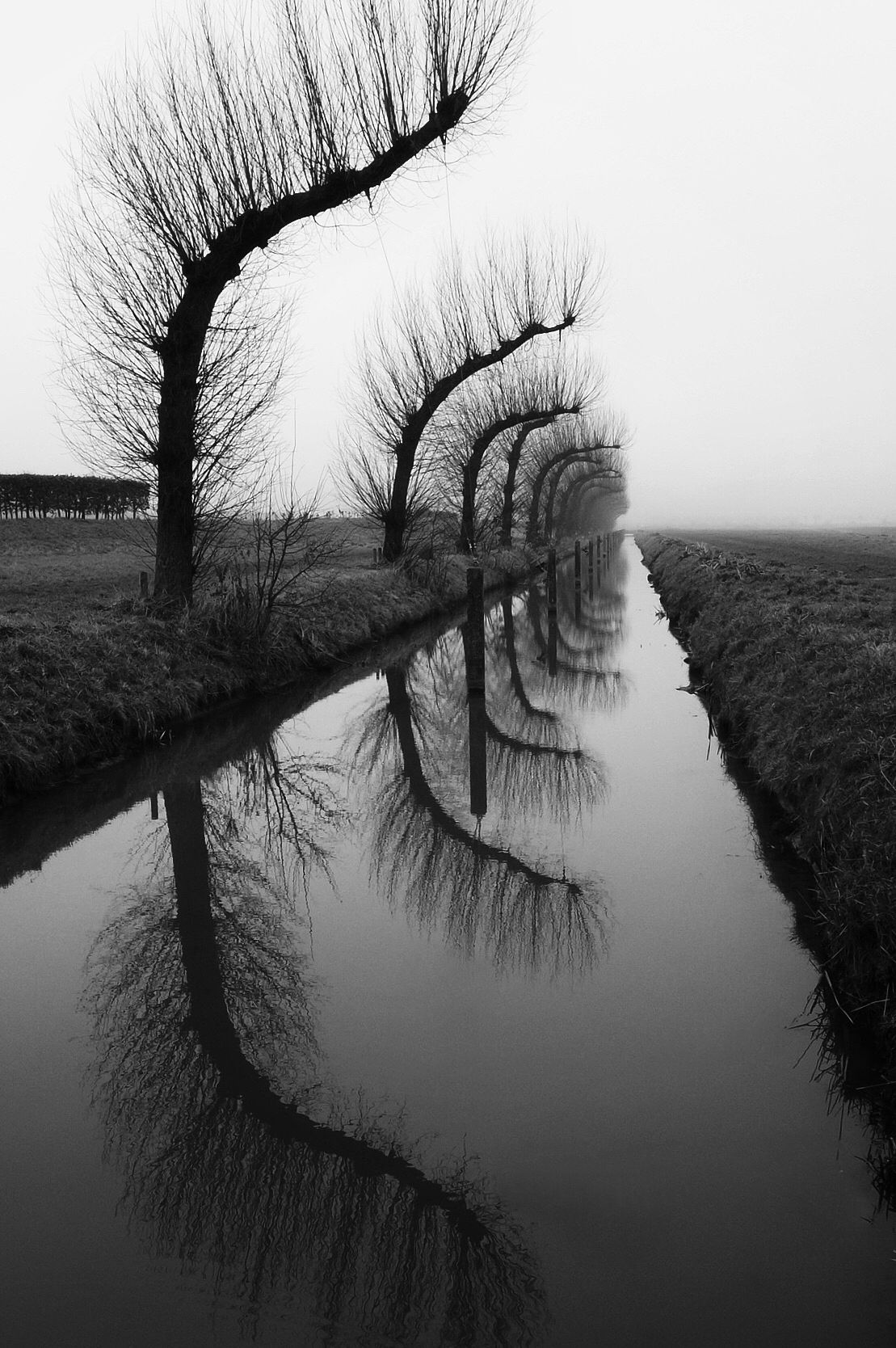 Beautiful black and white reflections by jan spreeuw
