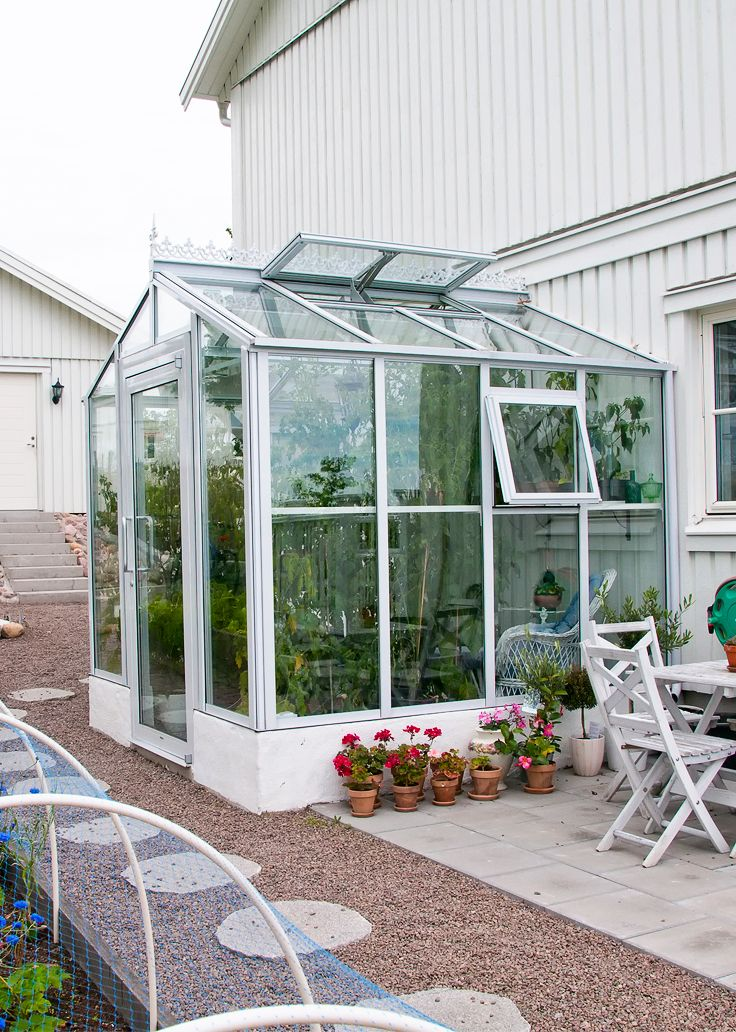 Conservatory Room Addition In The Uk 1040x1485 In 2020: The Tomato And Chilli Plants Nearly Taking Over In The Traditional Gable Attached Orangery