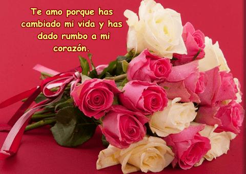 Imágenes De Rosas Hermosas Para Compartir En Facebook