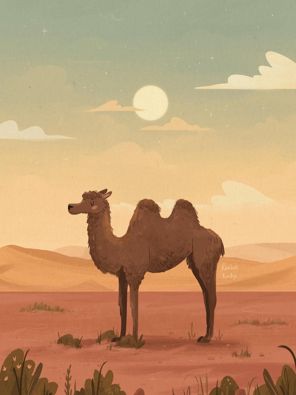 Pin by hazy on 插画艺术 Desert animals, Illustration, Animal