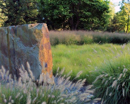 New Steingarten Schilf hoher Zierrasen B ume Garten gestalten