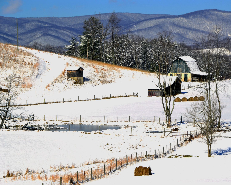 Prairie Chicken Images, Stock Photos & Vectors | Shutterstock  |Winter Scenes With Chickens