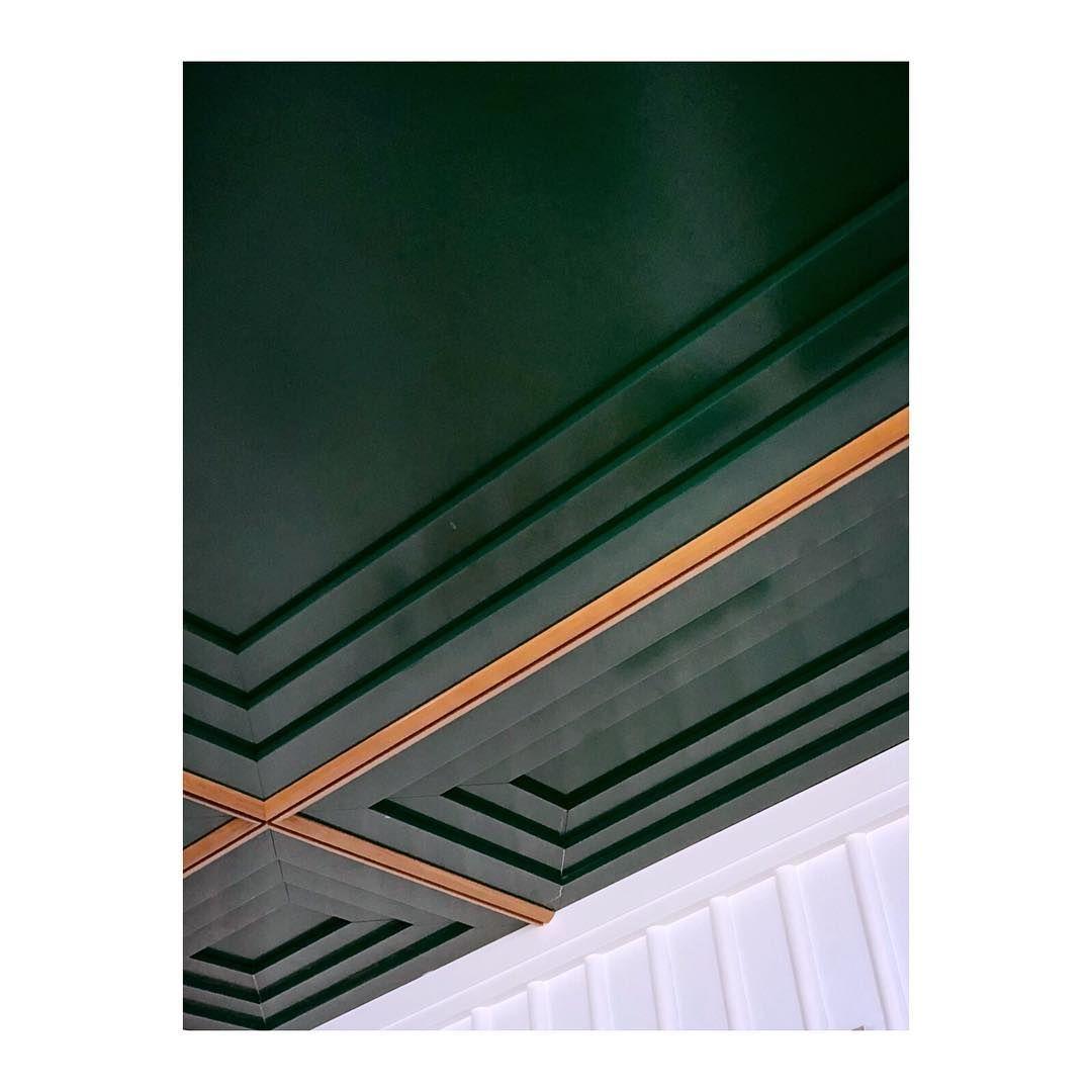 Toro Liautard On Instagram Printemps Perruche