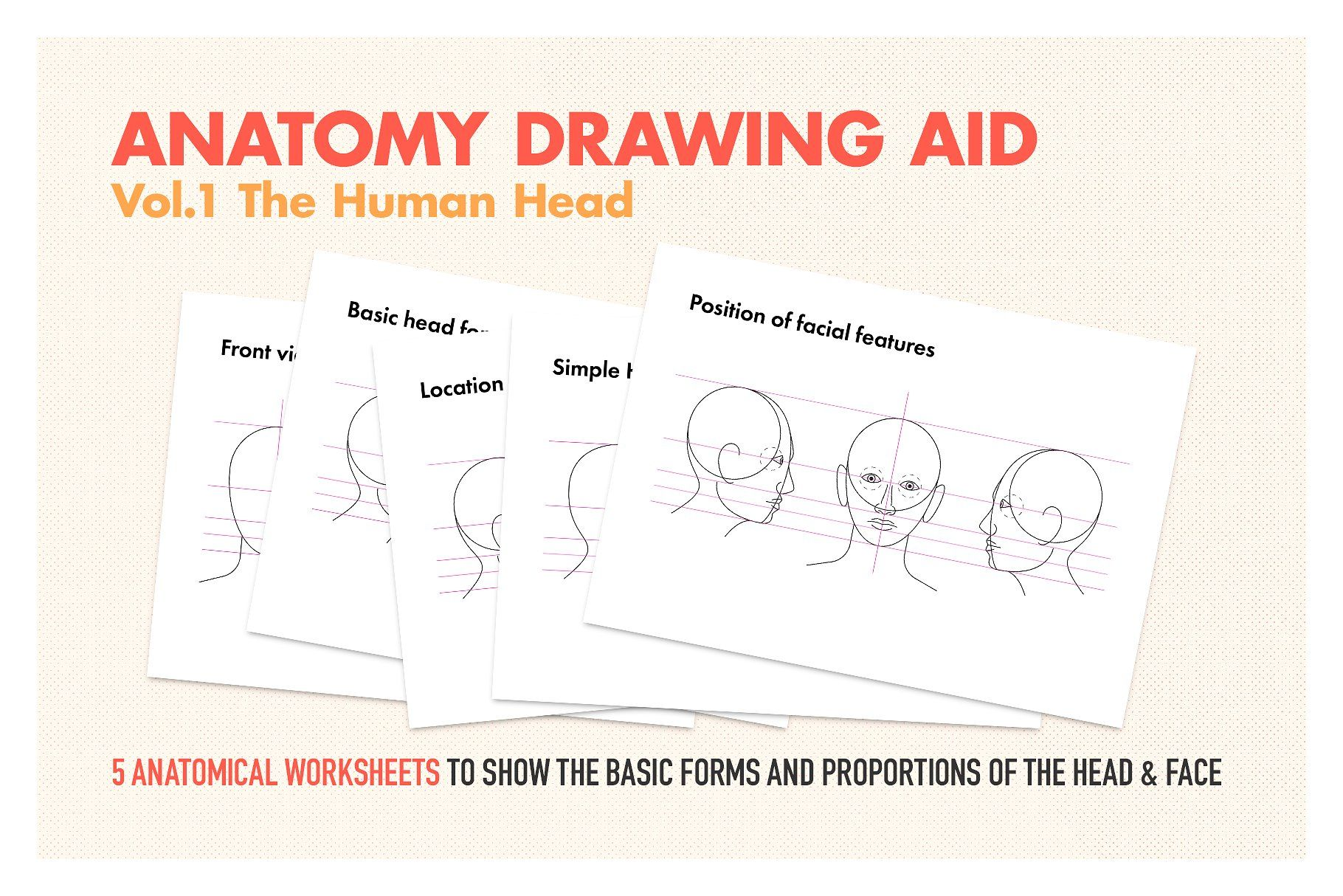 Anatomy Drawing Aid