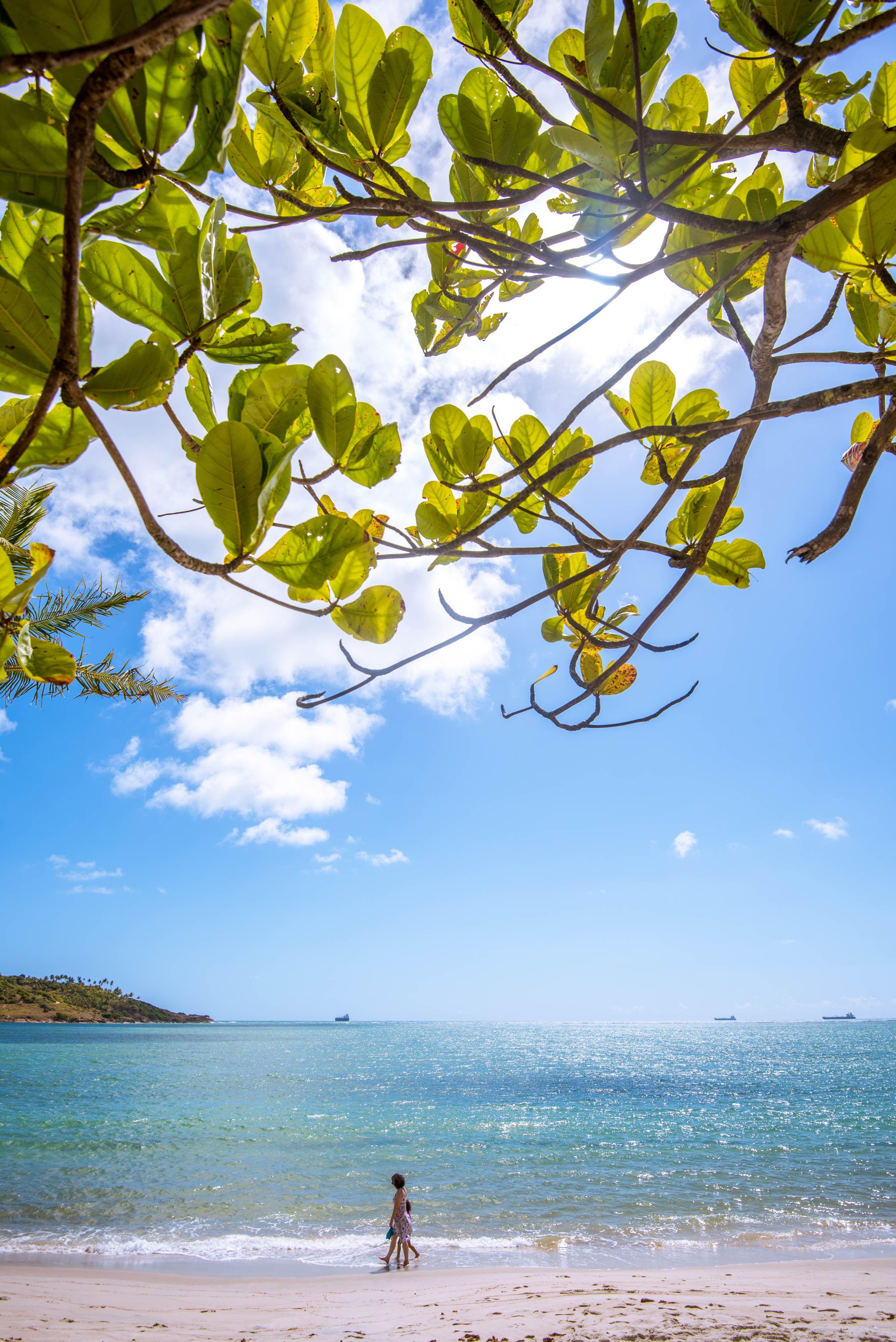 Passeios Na Praia Vila Gale Eco Resort Cabo Pernambuco Brasil