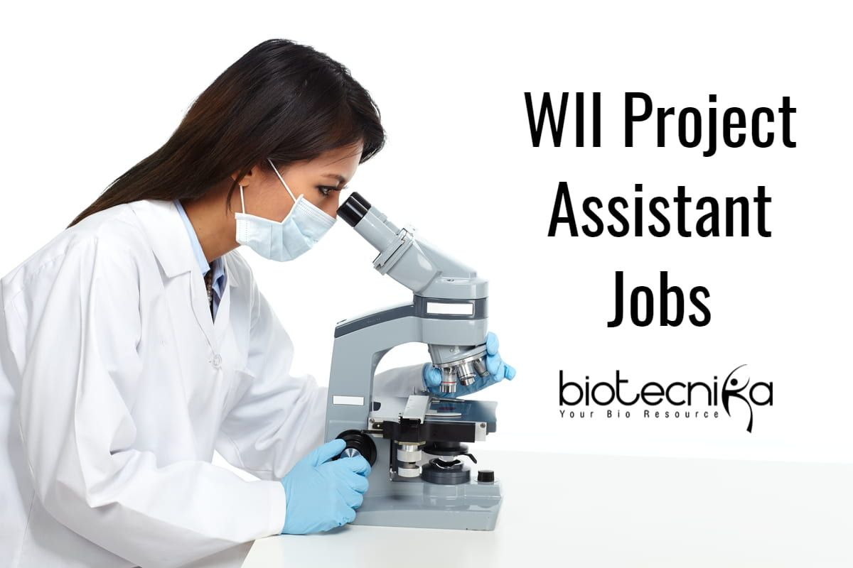Wii Project Assistant Jobs Msc Biological Sciences Botany Zoology Apply Wii Project Assistant Jobs Candidat Science Biology Chemistry Jobs Assistant Jobs