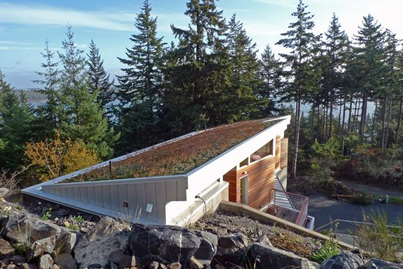 Best Green Roof Green Roof House Green Roof House Roof 400 x 300