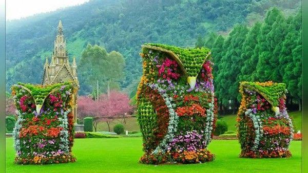 Wonderful Garden Free Hd Wallpaper Hd Wallpapers Garden Owl Dream Garden Garden Art Garden background images hd download