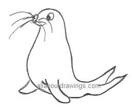 how to draw a seal in easy steps