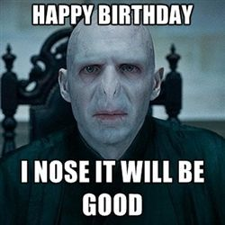 happy birthday harry potter meme 10 Happy Birthday Memes That Will Have You Rolling On The Floor  happy birthday harry potter meme