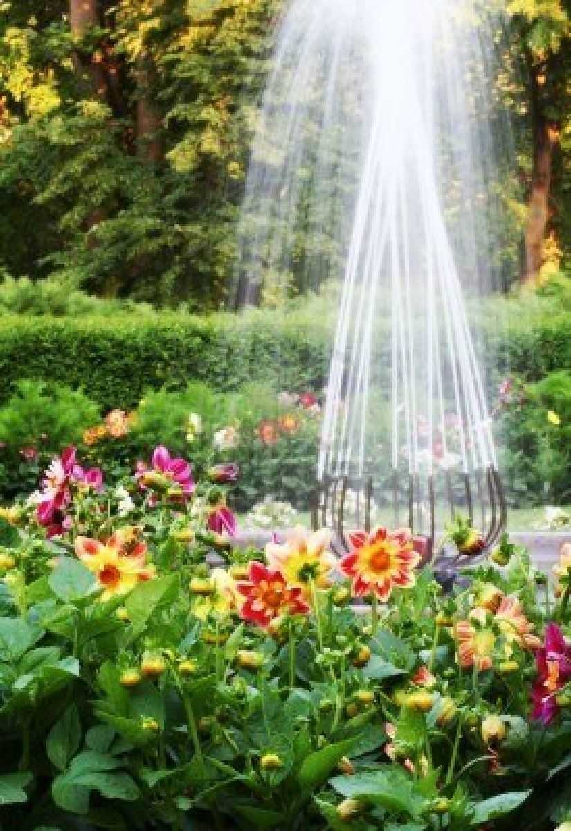 flower garden with water fountain - | Flowers and Gardens ...