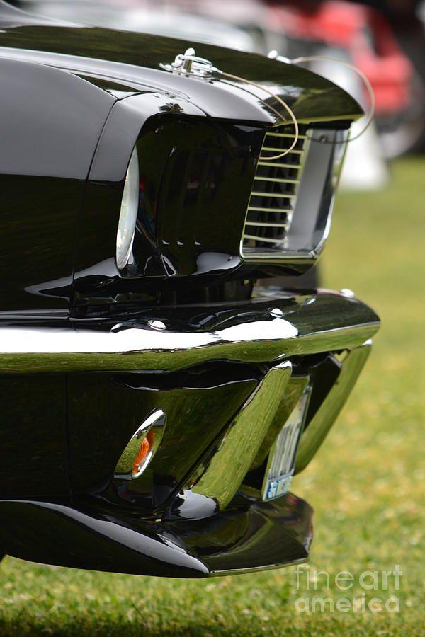 Terra Nova Hs Car Show By Dean Ferreira My Hot Rides Mustang