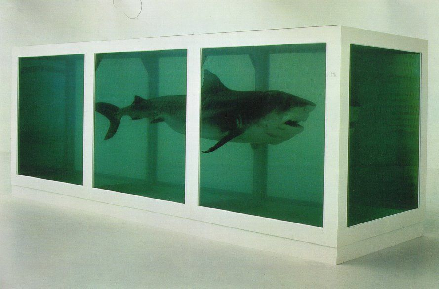 """""""The Physical Impossibility of Death in the Mind of Someone Living"""" an installation by Damien Hirst"""