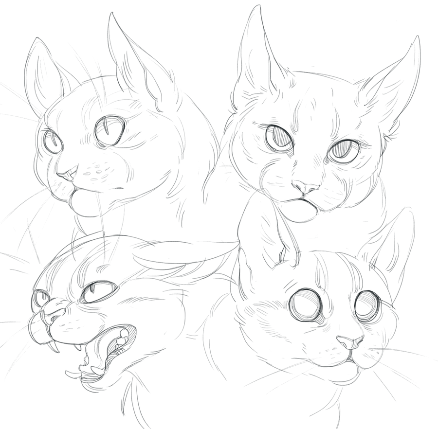 Cat doodles by SHADE-ShyPervert.deviantart.com on @DeviantArt ...