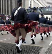 Oh, I love a parade!