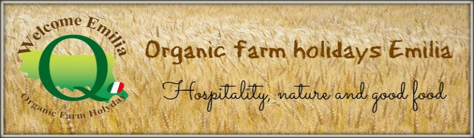 Organic Farm in Italy (Emilia Romagna): good and healty food, genuine hospitality in rural houses.
